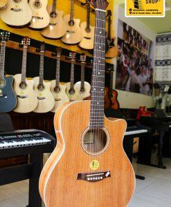 Đàn Guitar Acoustic NT-A20 Gỗ Hồng Đào Kỹ ở đà nẵng