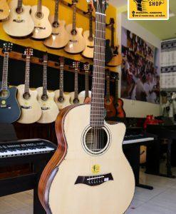 Mua Đàn Guitar Acoustic NT-C50 Gỗ Cẩm Việt tại đà nẵng